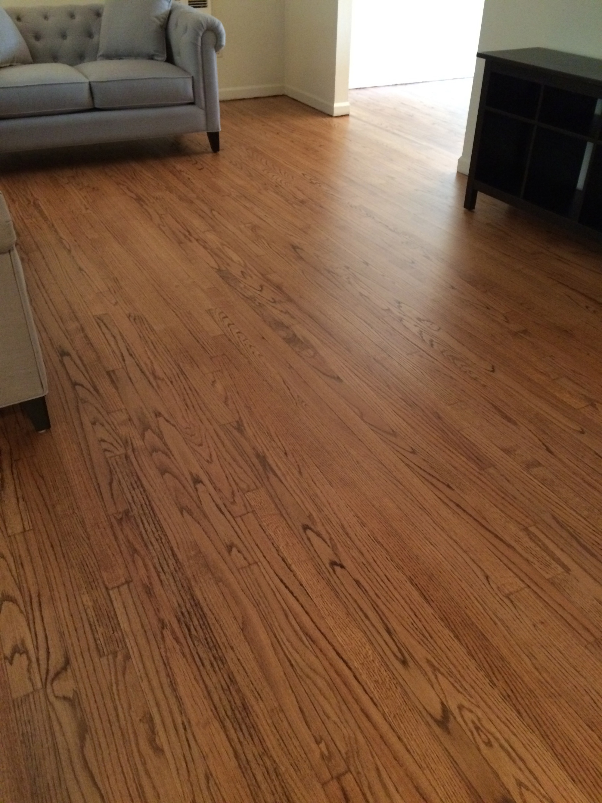 Pulling Staples Out Of Hardwood Floors How To Remove Dark